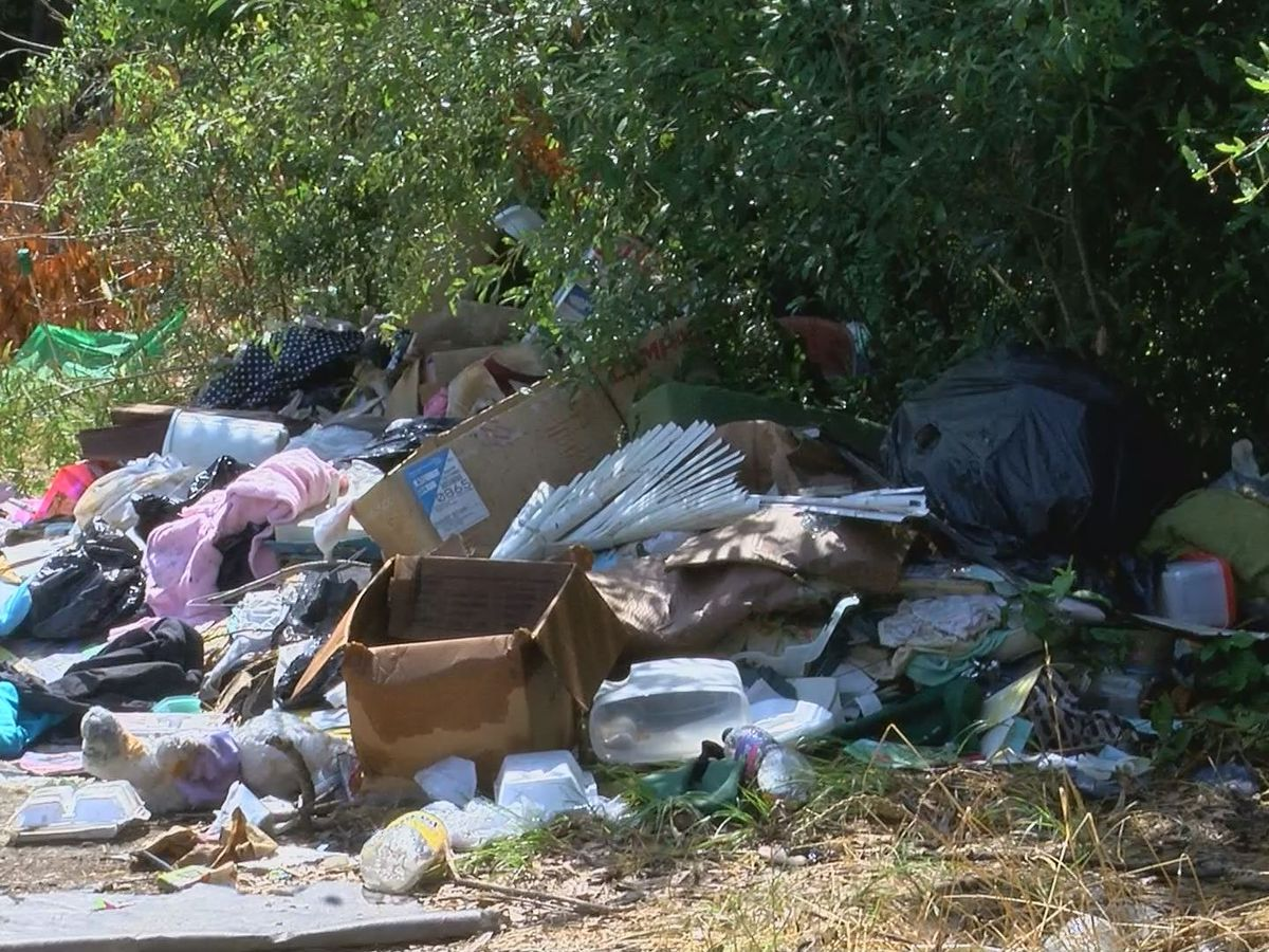 Albany town hall meeting to address illegal dump site concerns
