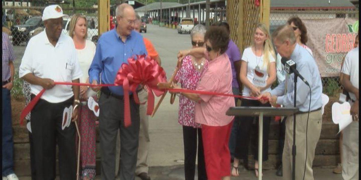 Watermelon festival cuts the ribbon its 66th year