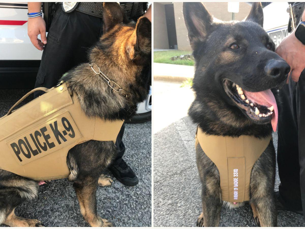 'Vest for Von': Americus Police K-9 gets protective vest