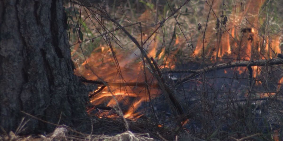 Warm, dry weather makes controlled brush fires challenging
