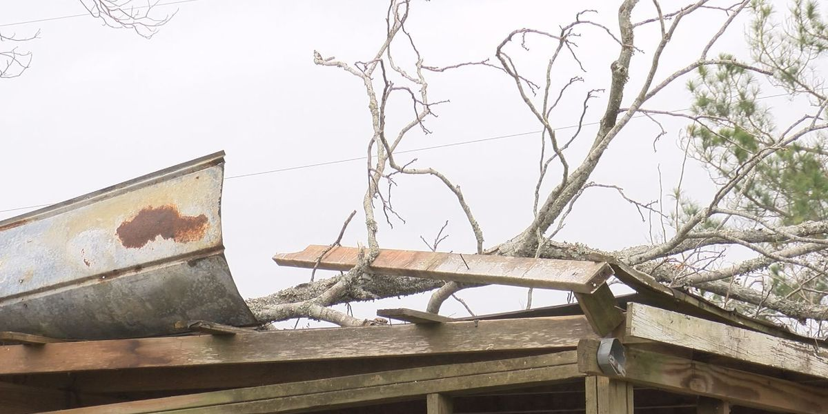 Officials release updated damage estimate for insured losses