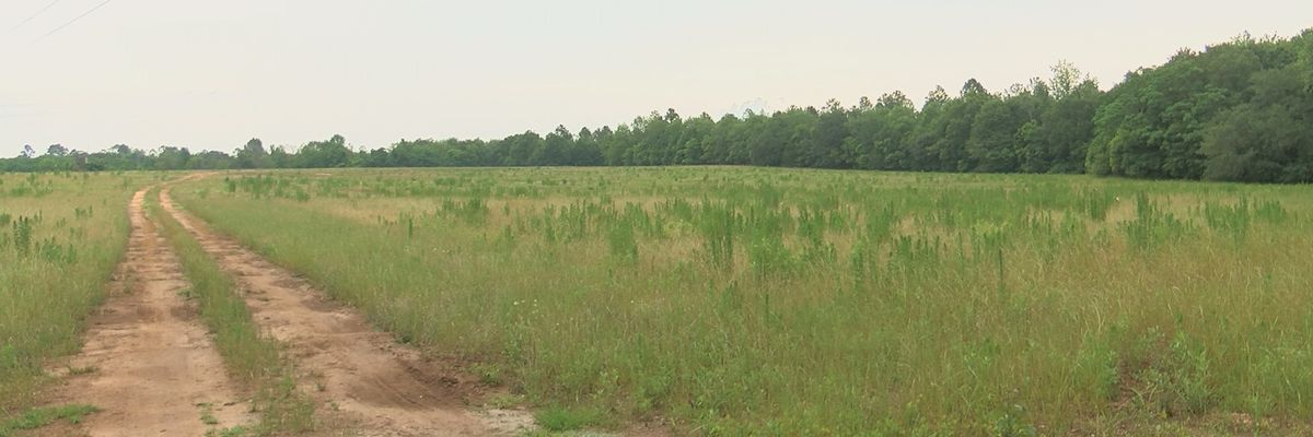 Lee Co. commissioners talk new land development, commercial vehicle ordinance