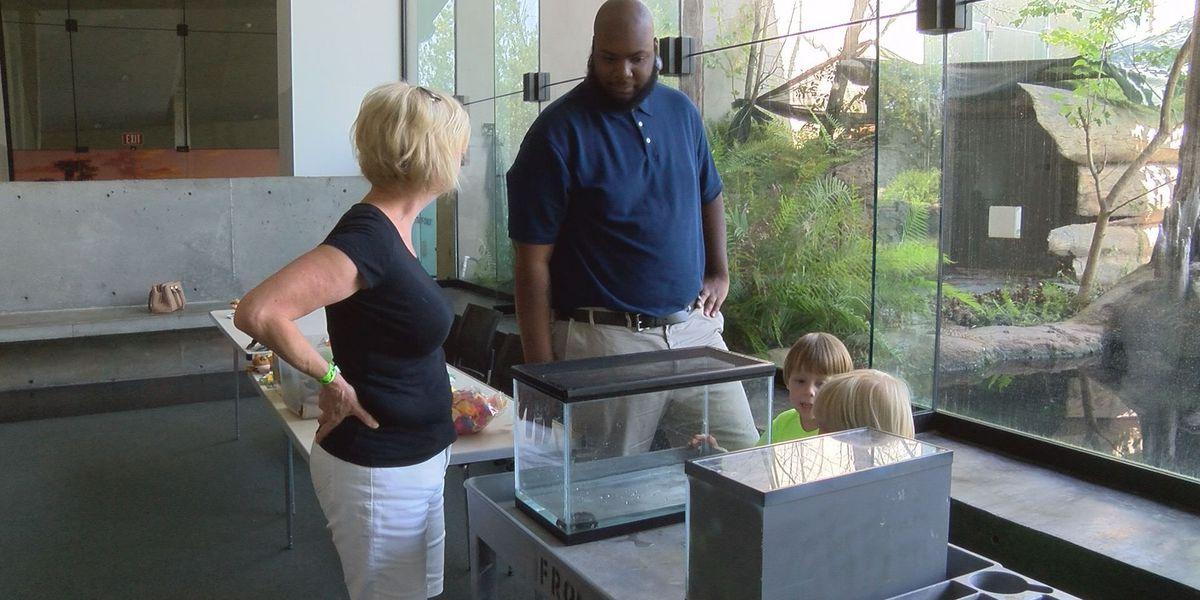 Flint RiverQuarium hosts 'Amphibians in August' day