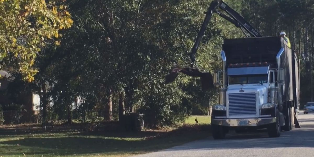 Lee Co. begins debris cleanup on Halloween