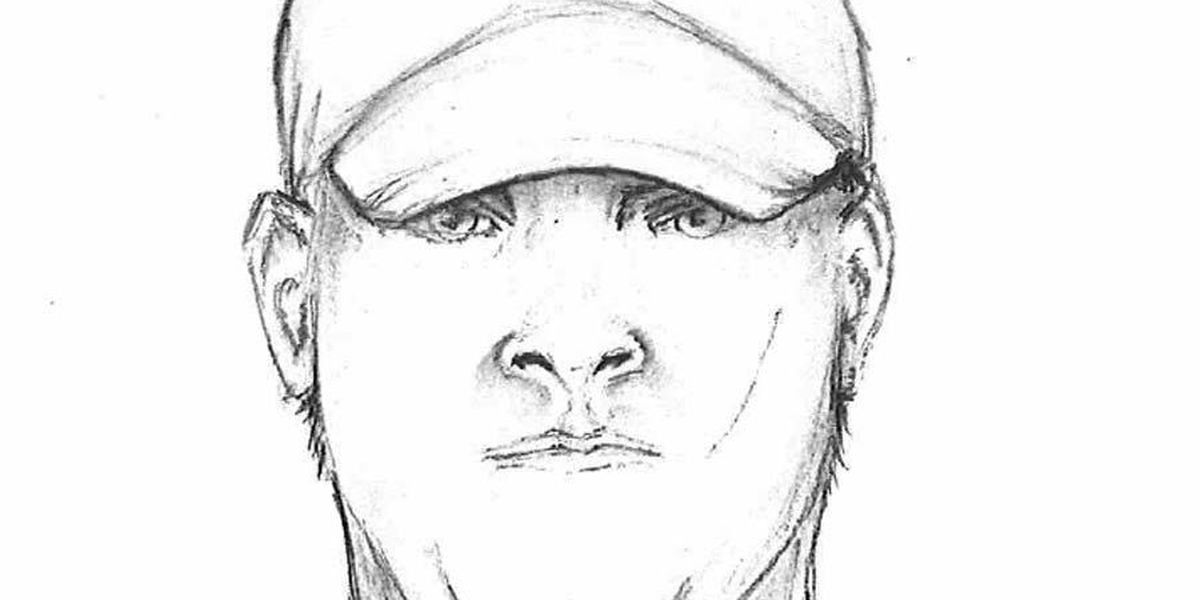 VPD releases sketch of attempted baby-napper