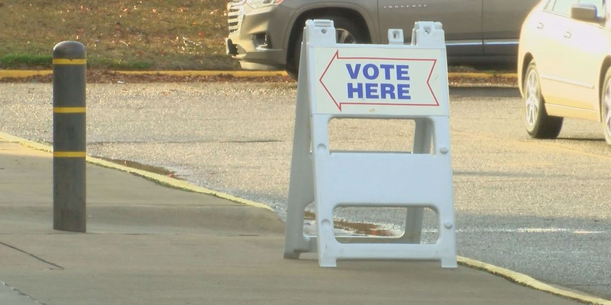 Dougherty Co. political parties react to state voter bills