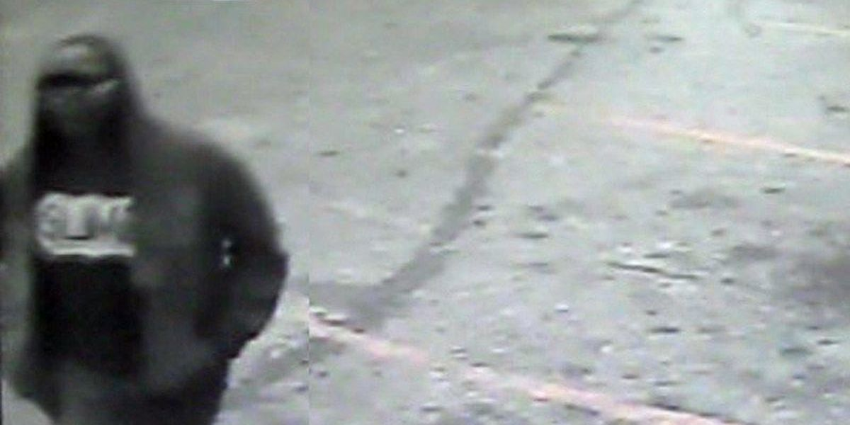 Cordele Police, K-9 team search for armed robber