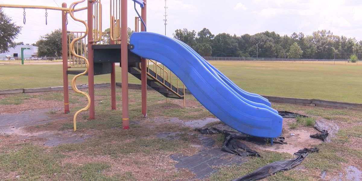 Dougherty Co. commissioner works to repair Albany park
