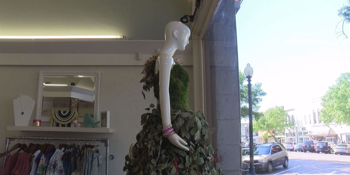 Who has the best window decorations ahead of Thomasville Rose Show? Cast your vote