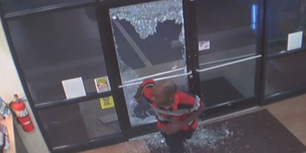 Police search for masked gunman in Albany robbery