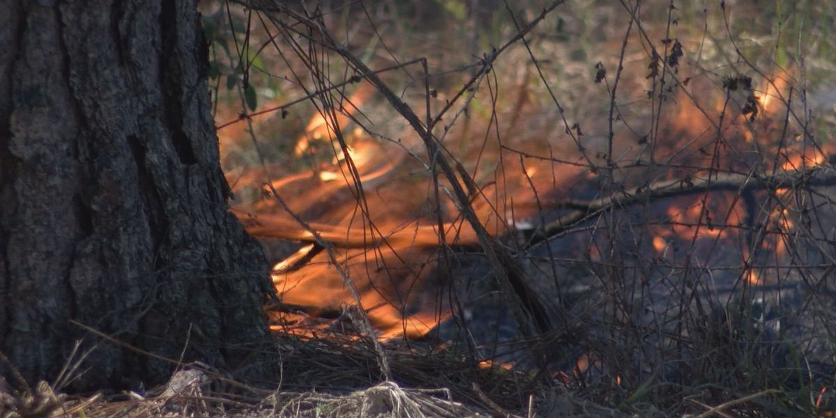 It's time for controlled burns