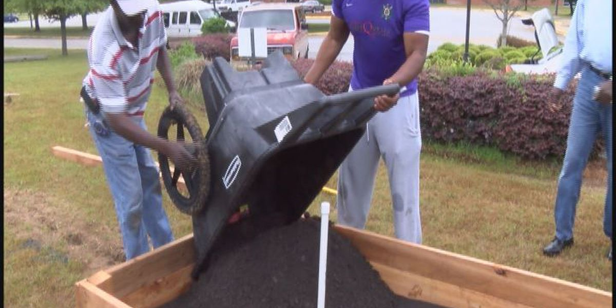 Albany State has a new community garden