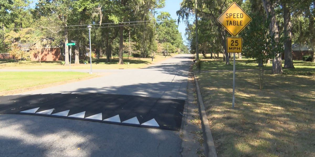 Possible changes coming to Albany's speed bump approval process