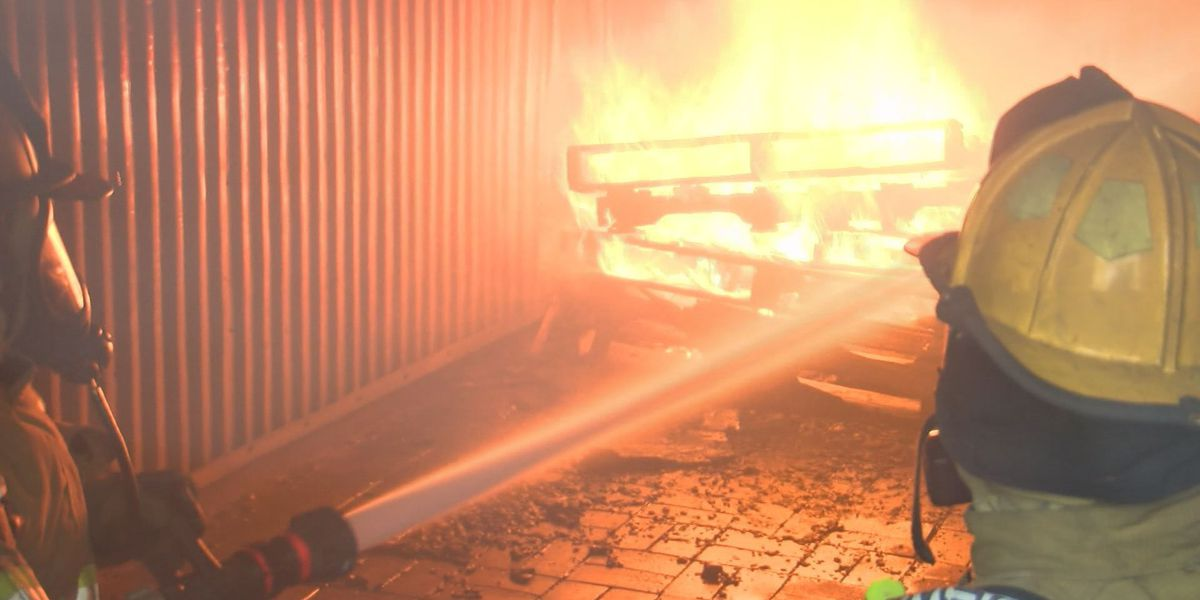 AFD trains with live-fire exercises