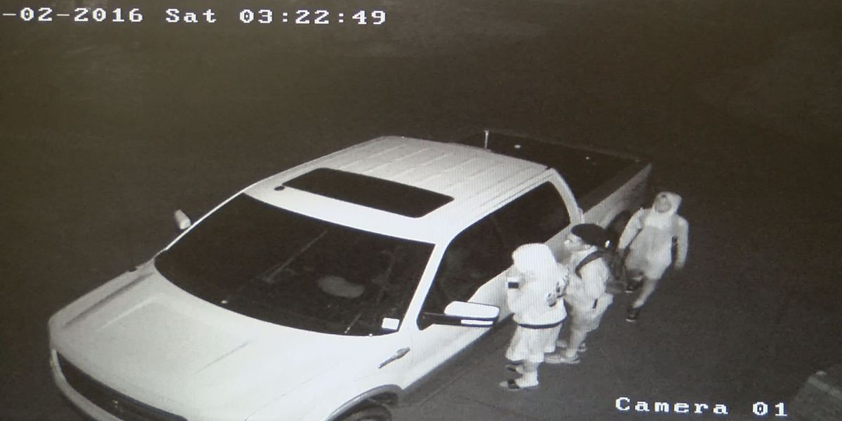 Reward offered for help finding suspects caught on camera