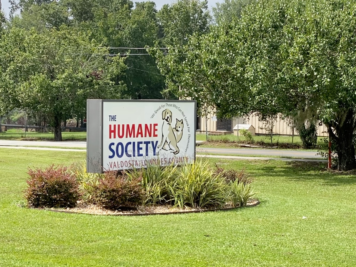 Humane Society urges pet owners not to surrender them