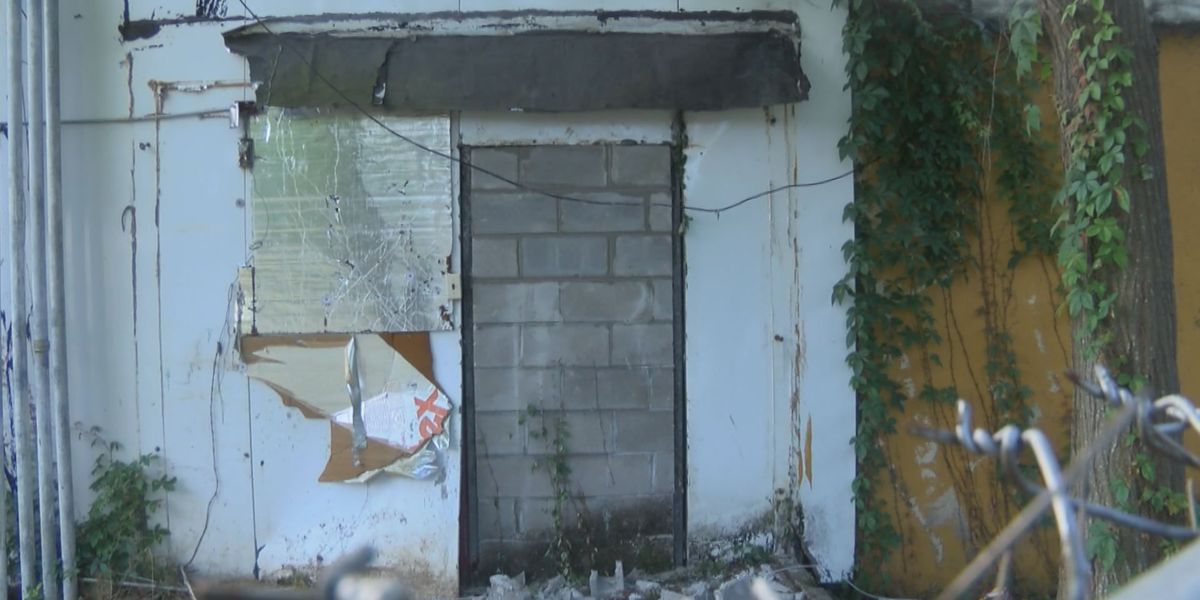 South Albany liquor store broken into through back wall