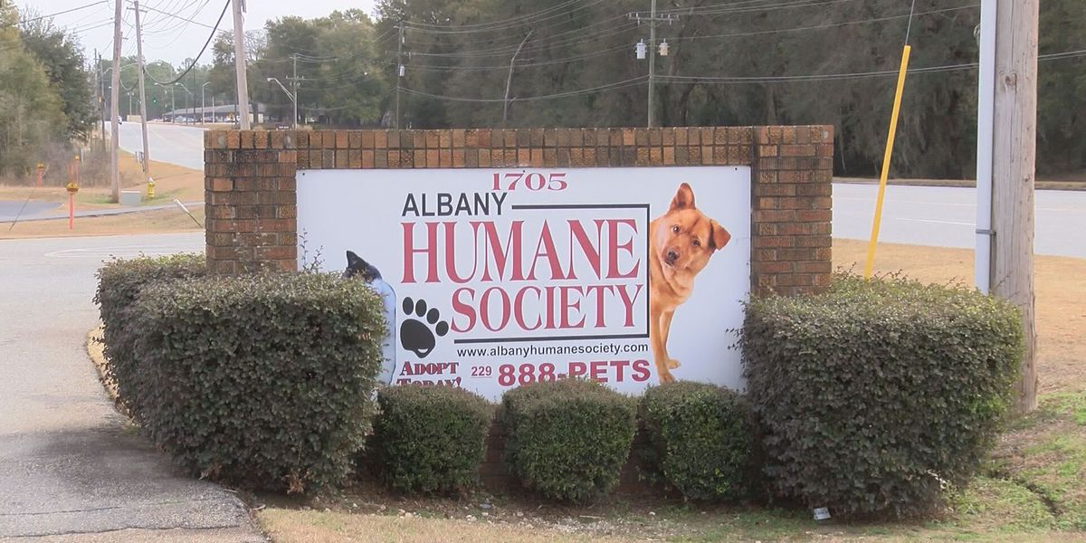 UPDATE: Albany Humane Society back in business