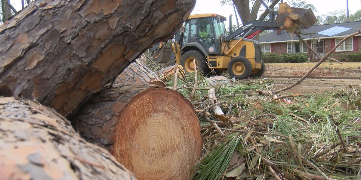Company ready to start debris removal for Jan. 2 storm in Dougherty Co.