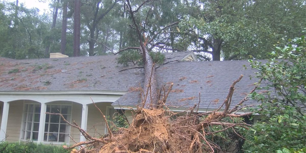 FEMA hiring GA residents to help with Hurricane Irma recovery efforts
