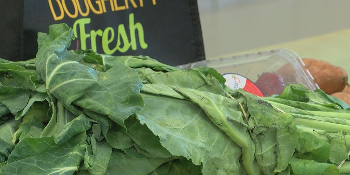 Fresh produce given away during 2nd Dougherty Fresh Workshop