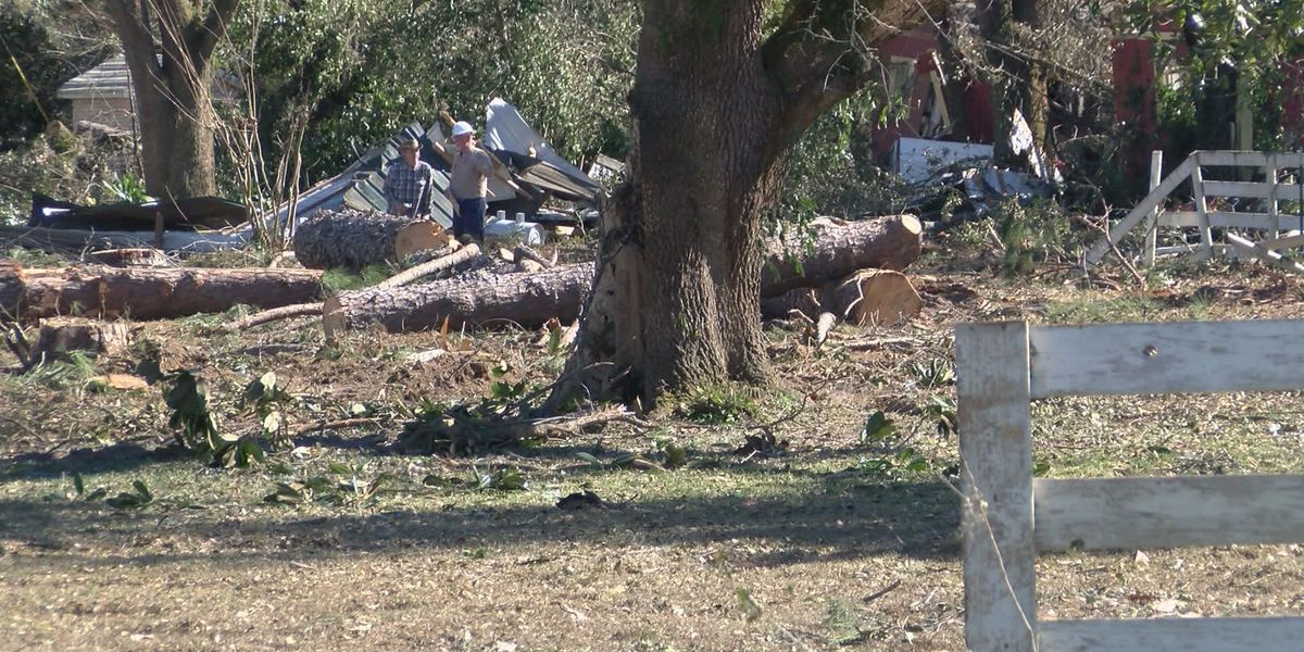 Dougherty Co. official gives update on tornado recovery process