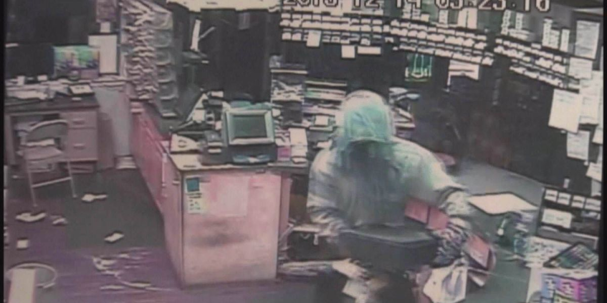 Investigators search for Early Co. burglar