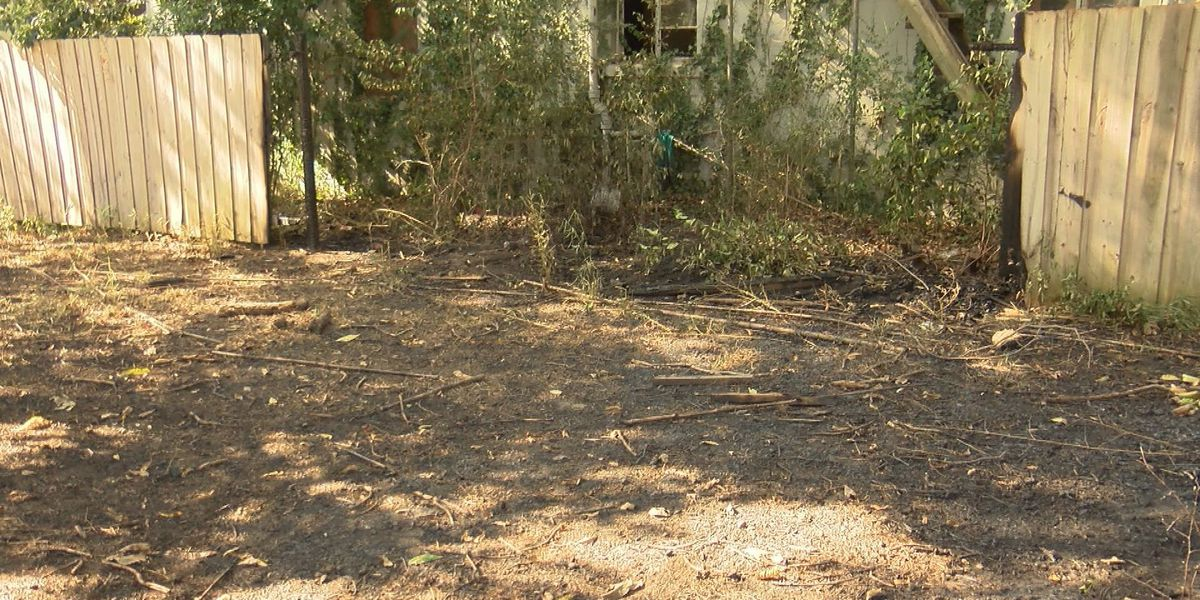 Fire officials: Cigarette sparks Albany fire, smokers should be cautious in drought