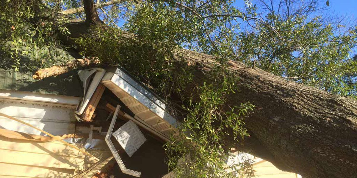 Storms leave path of damage in Nashville