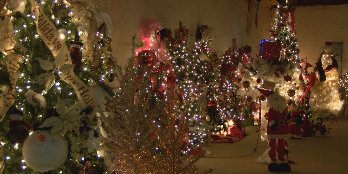Festival of Trees begins in Sycamore