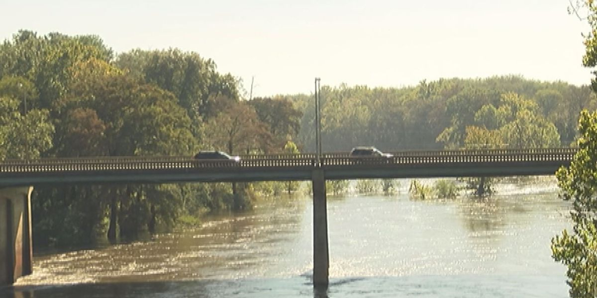 GDOT wants to replace Oglethorpe bridge