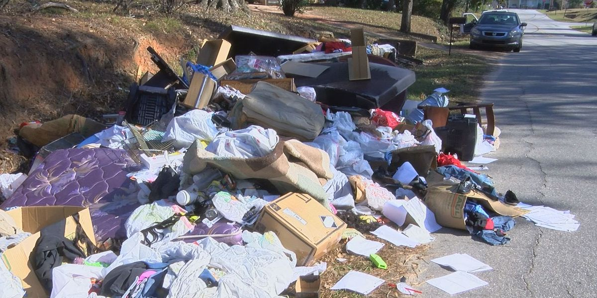 Albany commissioner issues warning after illegal dump site found