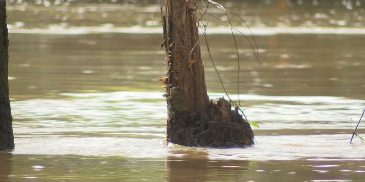 Residents see flood damage on Northampton in Lee Co.