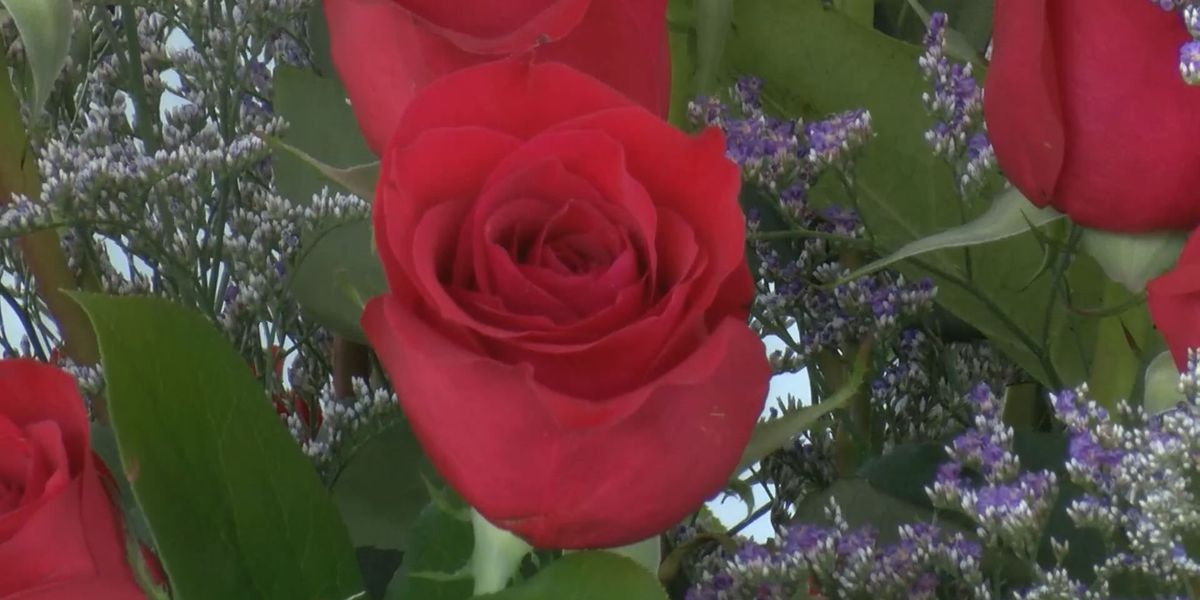 City of Roses sees 97 years for Rose Show