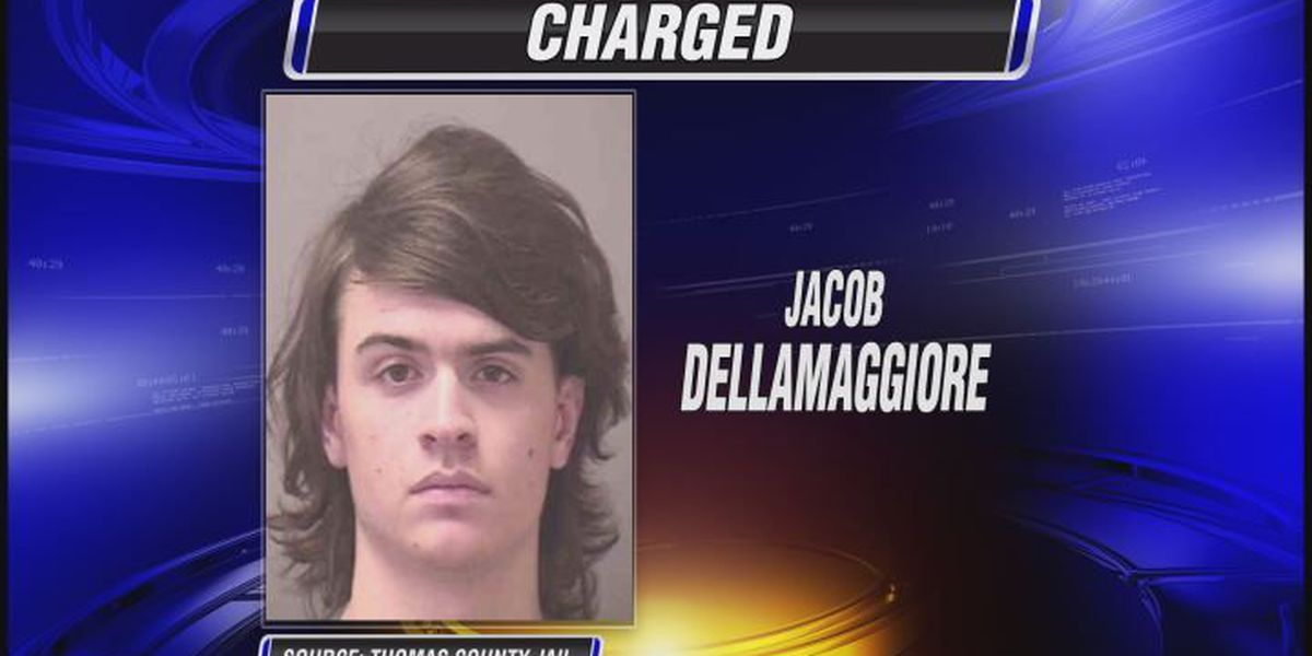 Teen arrested, charged with attacking pregnant girlfriend