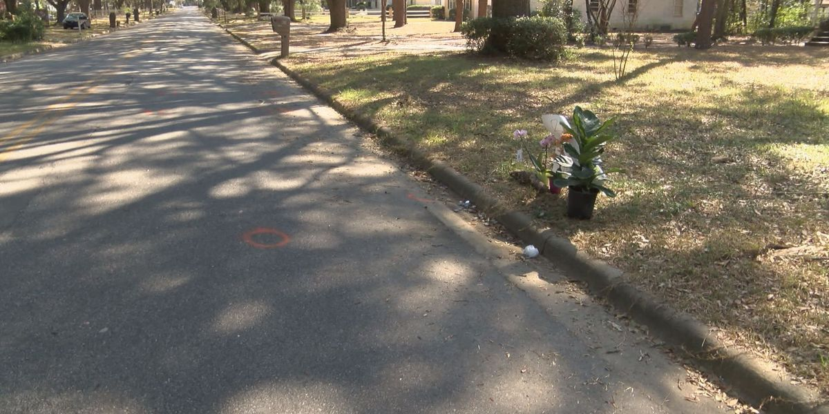 No charges pending in Albany bicycle death