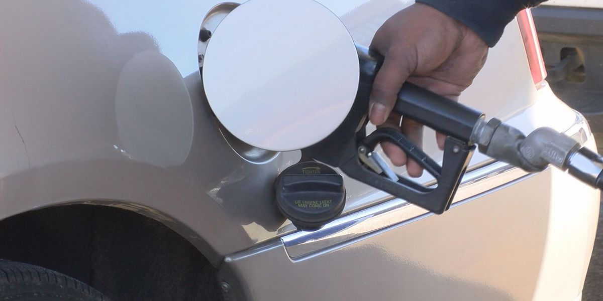AAA expects gas prices to remain steady