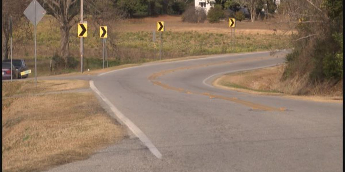 Family of pedestrian hit in Sylvester wants road safety improvements