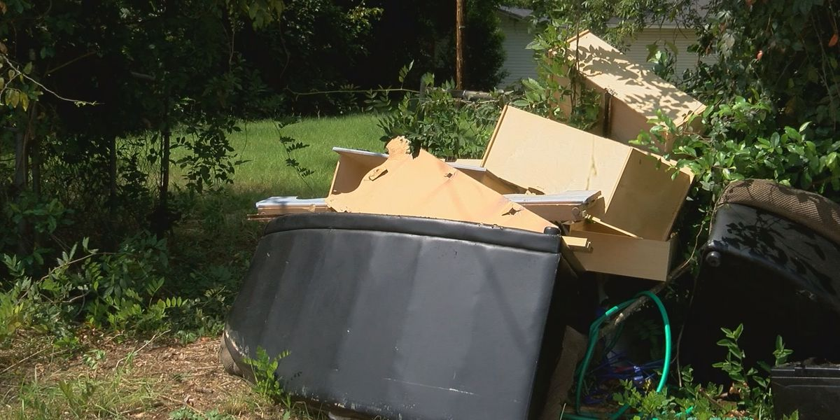 City leaders concerned after finding Illegal dumpsite behind Albany church