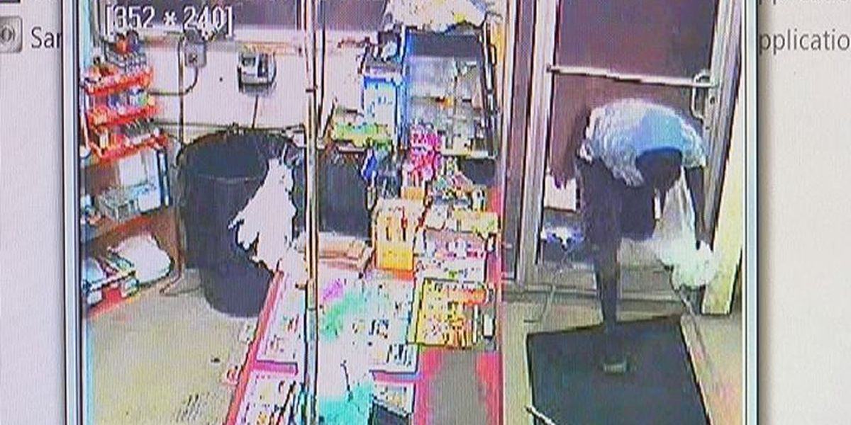 Video caught Pitt Stop thieves