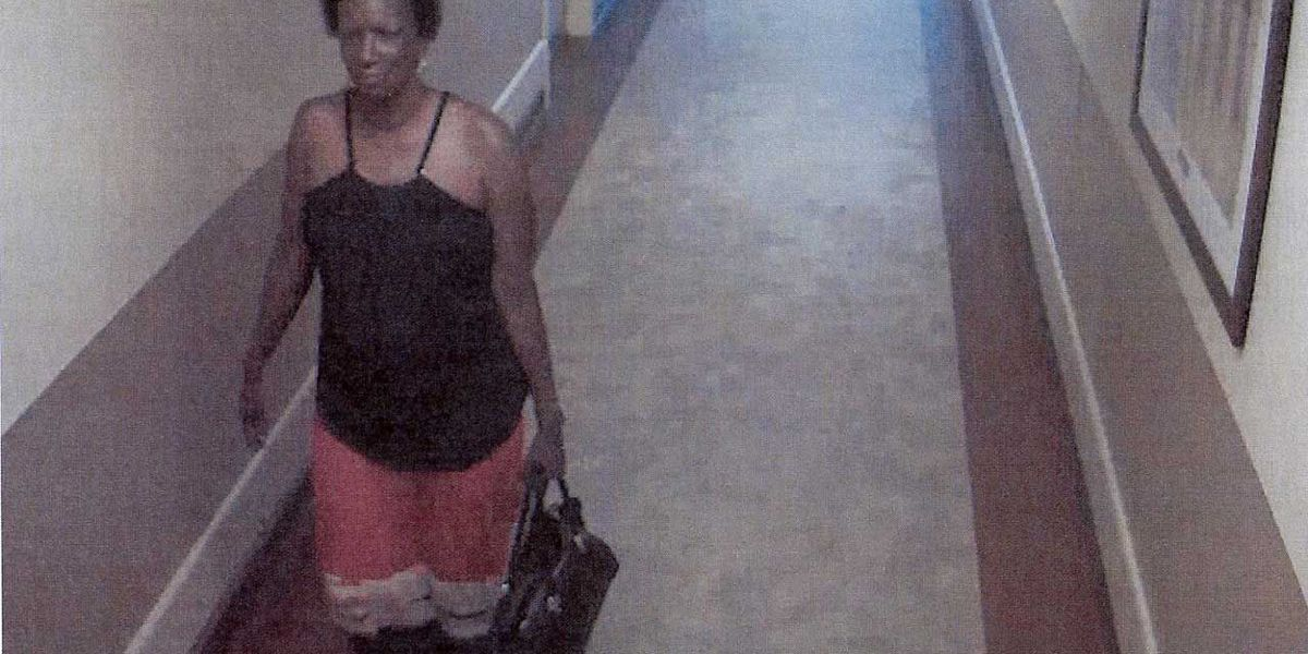 Man and woman wanted in credit card thefts
