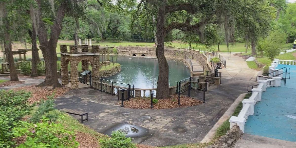Radium Springs renovations make two jumps ahead