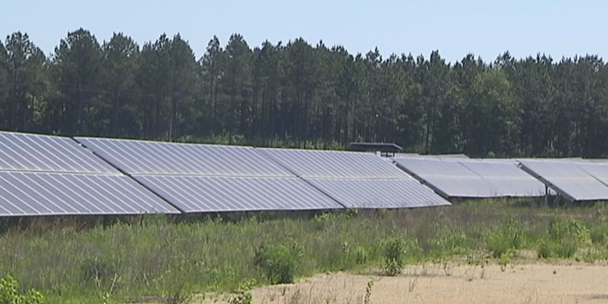 Public input welcome on solar farms in Albany
