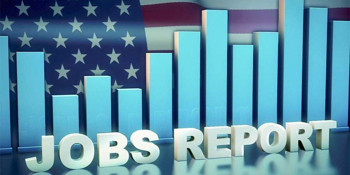 Georgia set an employment record in April