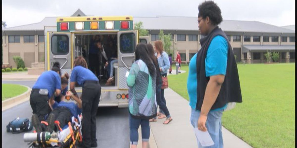 "South GA students get ""wired"" for health careers"