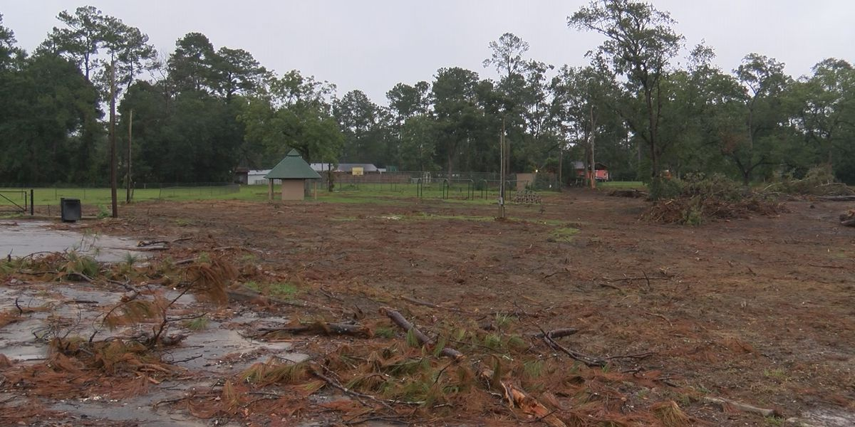 Cairo receives grant to renovate Southern Terrace Park