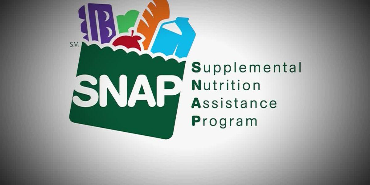 Kemp addresses SNAP program in wake of COVID-19 pandemic