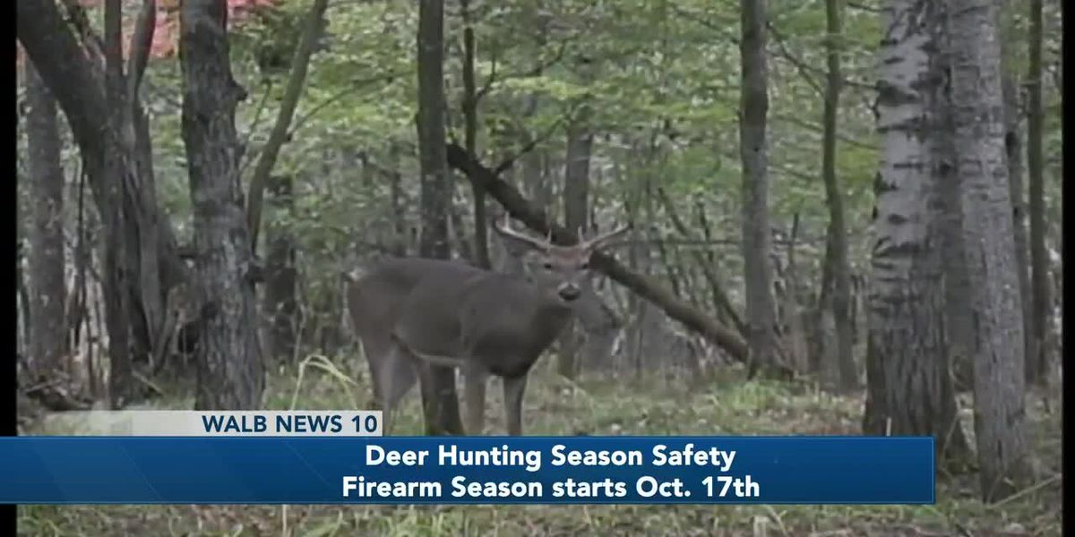 Safe and Sound: Deer Hunting Season Safety