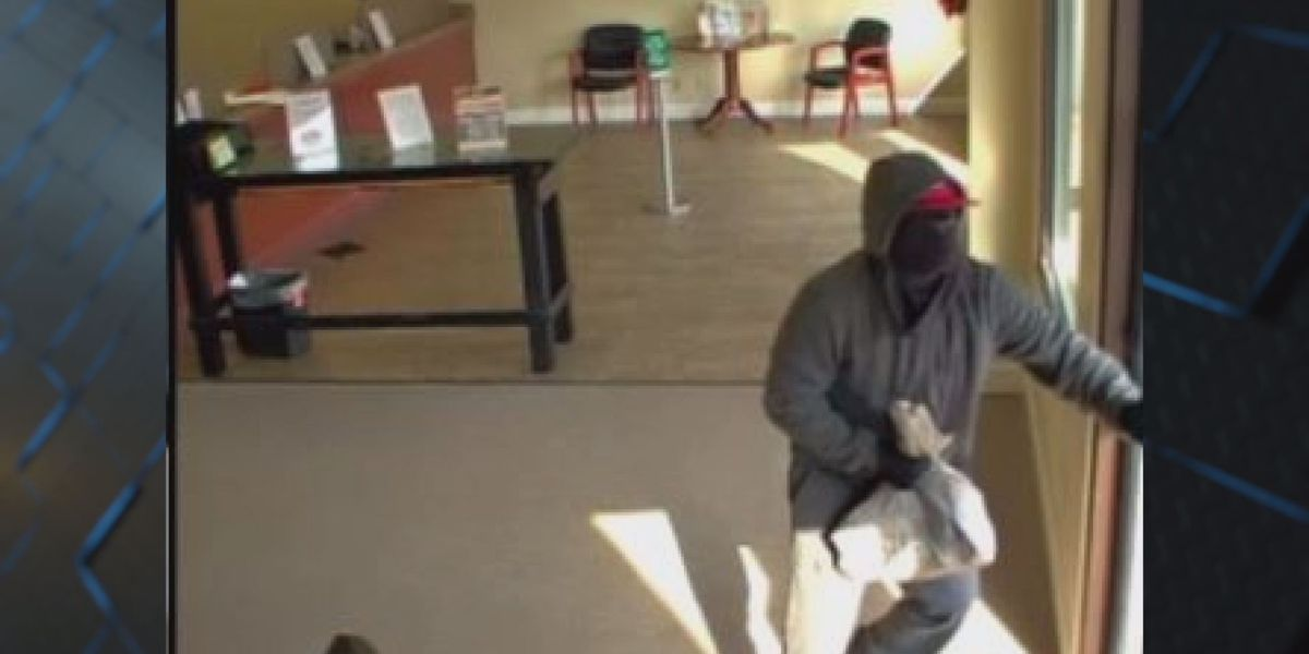Albany credit union held up; police search for suspects