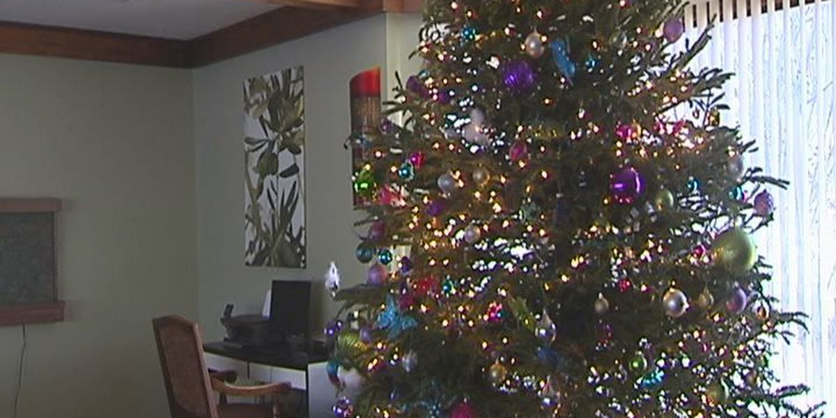Dougherty County family's Christmas presents stolen